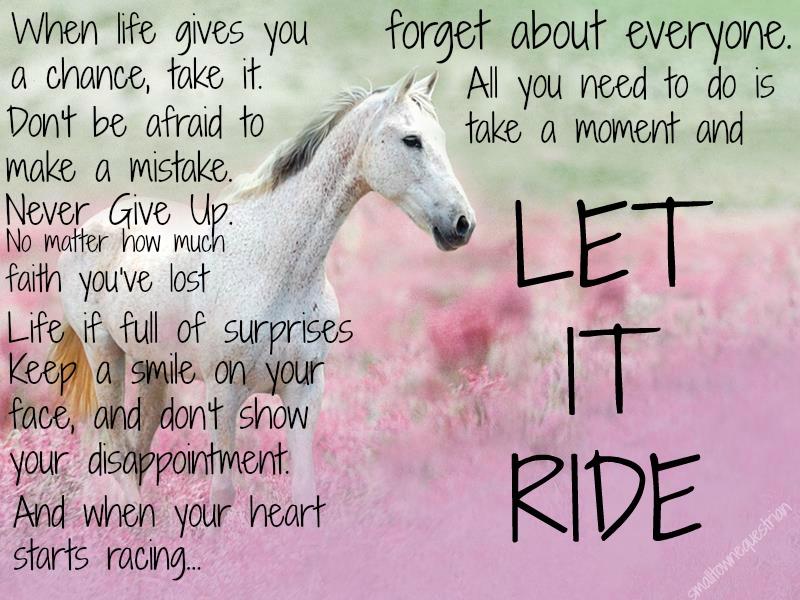 Good Horse Quotes. QuotesGram