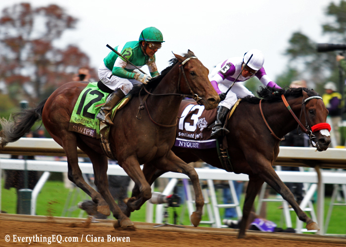 Nyquist Breeders Cup Juvenile
