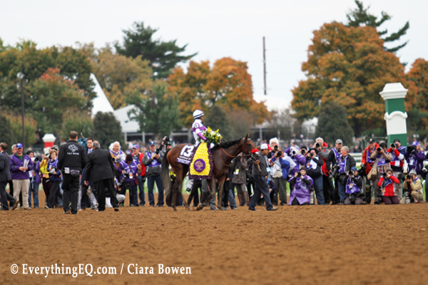 Nyquist Breeders Cup Win